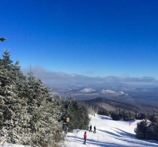 ski-article5
